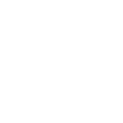 Brian Ellicott - Brisbane Back Pain Program Logo
